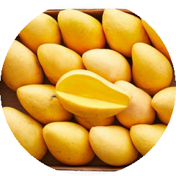 Mango Ataulfo 6