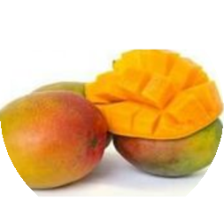 Mango Kent 1