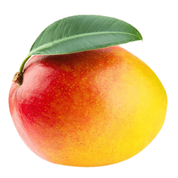 Mango Tommy Atkins