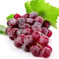 Grape Red Globe